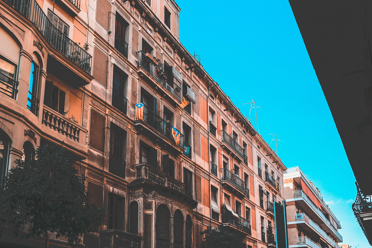 All About Section 8: A Guide for Owners and Renters in ...